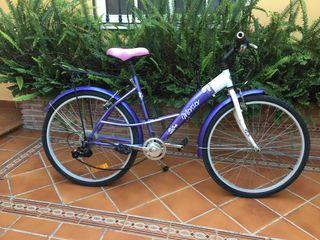 Bicicleta paseo Mercier.