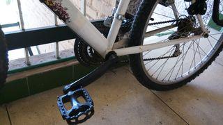 Bicicleta con silla de niño Junior