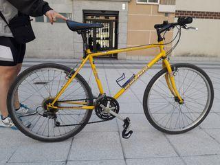 Bicicleta adulto. Oferta