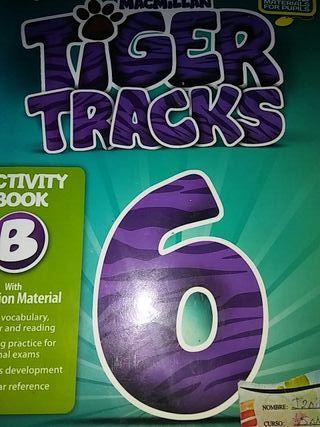libro 6 primaria ingles