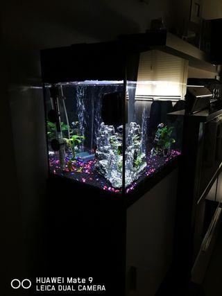 acuario 45L