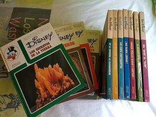 Enciclopedia Libros Disney