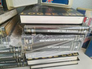 lote de libros español ingles ect.