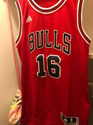 Camiseta adidas Bulls gasol
