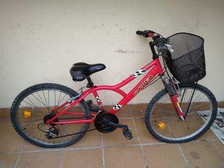 Bici Orbea con cesta y sillín cómodo.
