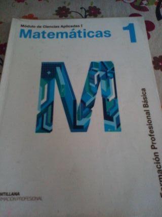 matemáticas 1 formación profesional básica