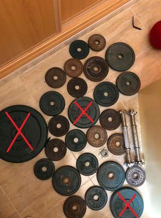 Discos pesas mancuernas gimnasio