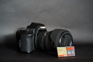 Canon 5d Mark II con Sigma 24-70mm f2.8