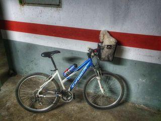 Bicicleta montaña Orbea mujer