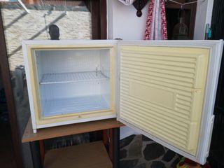 Congelador Zanussi y botellero