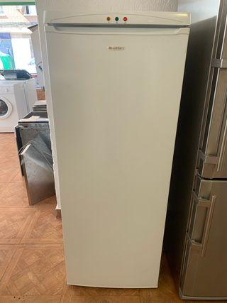 Congelador vertical Bluski