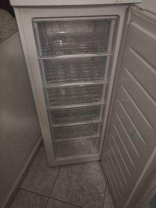 congelador