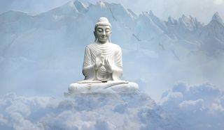 Clases de yoga y meditación on-line