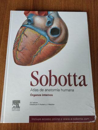 Sobotta Atlas de anatomia, Organos internos