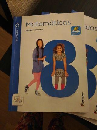 libros matemáticas 6