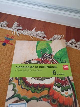 libros 6°primaria sm