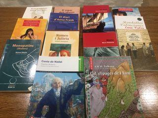 Libros de lectura de instituto en valenciano