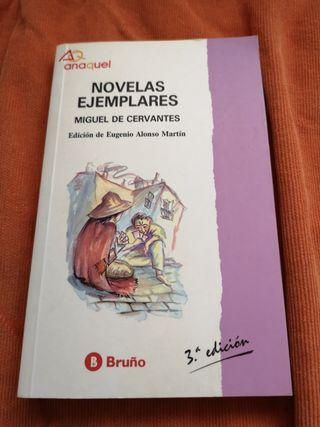 Novelas ejemplares Miguel de Cervantes