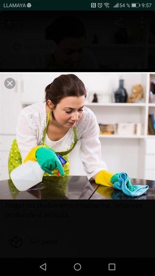 Persona de limpieza