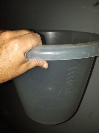 Timmy tub