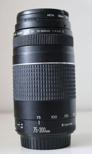 objetivo original CANON 75-300 con filtro Hoya