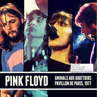 PINK FLOYD - PAVILLON DE PARIS, FRANCE 1977 (2CD)