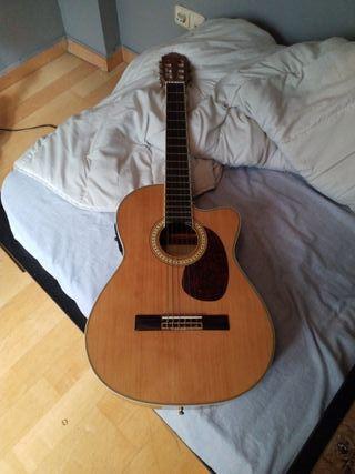 guitarra arcustica
