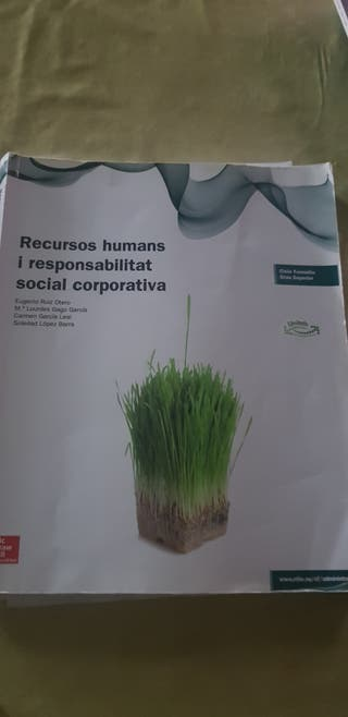 recursos humanos grado superior