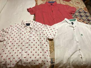 Camisas Springfield