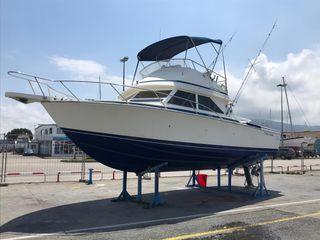 Bertram 28 SF Flybridge Cruiser