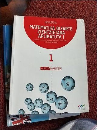 Matemática Gozarte Zientzietara Aplikatuta 1° Batx
