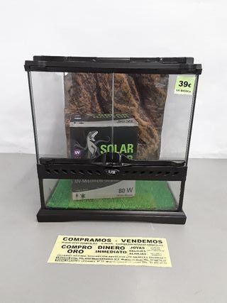 solárium reptiles