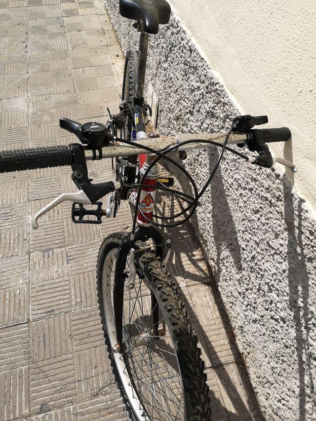 """Bici de carbono montaña 29"""""""