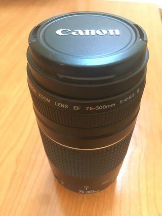 Teleobjetivo Canon 75-300 45.6