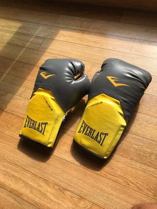 Set of Everlast boxing gloves