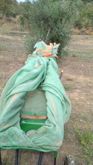 Paraguas recolector sobre carretilla