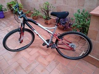 Bicicleta cuadro aluminio adulto