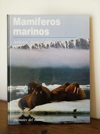 Mamíferos marinos, ballenas focas y delfines