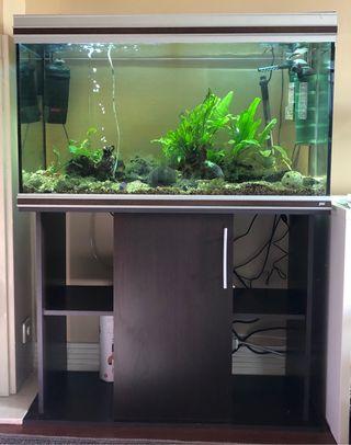 Acuario/terrario 240 litros+ mueble efecto madera