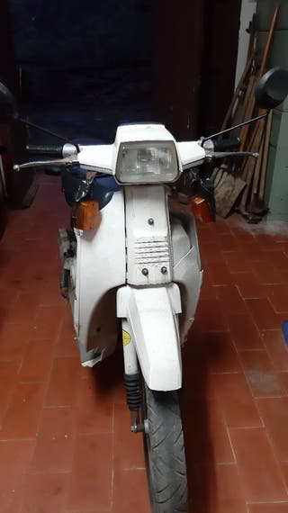 Scoopy sh75