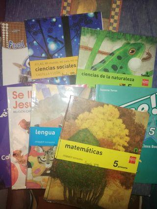 libros sm 5° de primaria