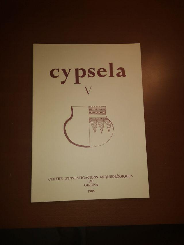 Cypsela V