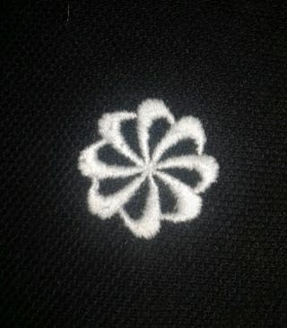 Premier polo Nike et premier logo Nike