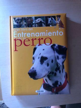 Libro de entrenamiento de perro