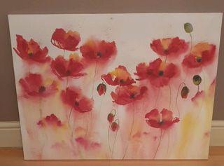 poppy canvas