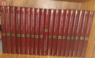 Libros CLASICOS DE LA LITERATURA ESPAÑOLA