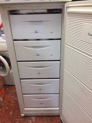 Congelador vertical ASPES