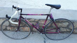 Bicicleta Orbea Kronos