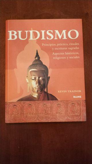 Libro Budismo Kevin Trainor