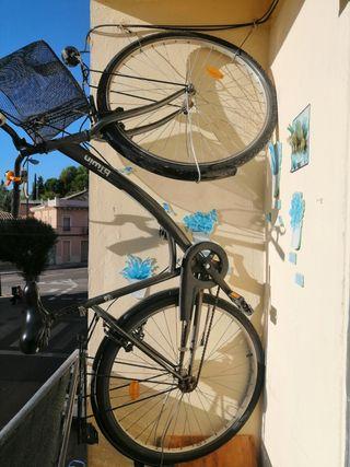 bicicleta de paseo par adulto.